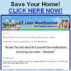 EZ Loan Modification